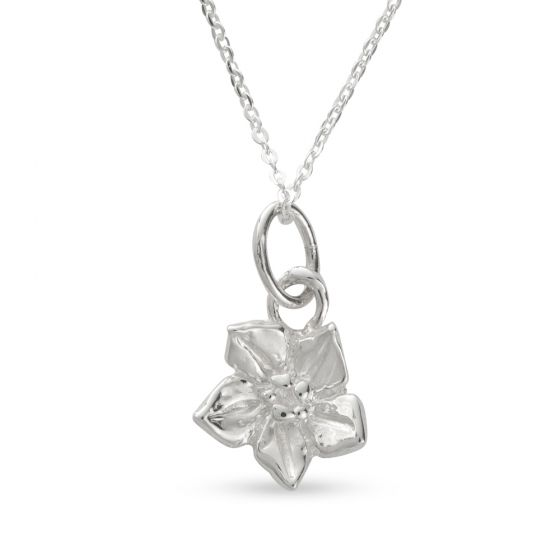 Licensed to Charm - Sterling Silver Forget Me Not Necklace Set