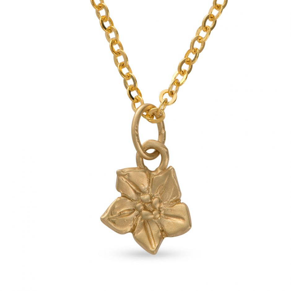 Licensed to Charm - Gold Vermeil Forget Me Not Necklace Set