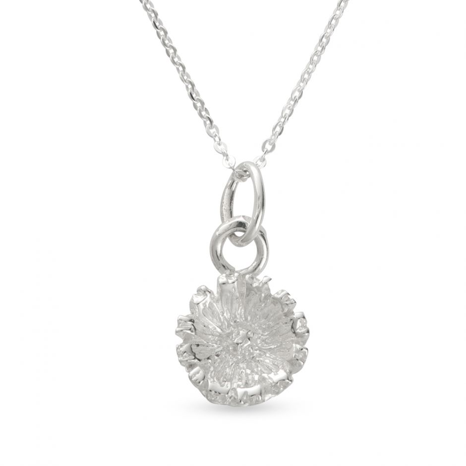 Licensed to Charm - Sterling Silver Daisy Necklace Set